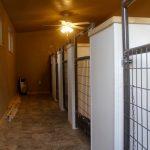 a-interior-dog-kennels-3