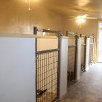 aa-indoor-dog-kennel