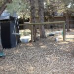 dog-facility-gate-2