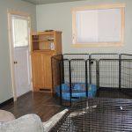 dog-training-facility-6
