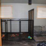 interior-kennels