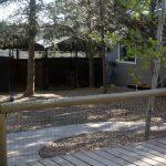 kennel-yard-1