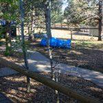 outdoor-dog-facility-yard-2