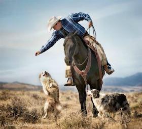aussie-with-horse-cowboy