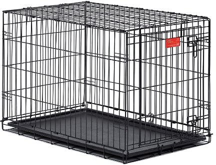 crate-cage-chewy