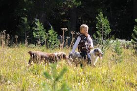 kid-walking-australian-shepherds-small