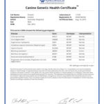 Einstein 5013_11274_Canine_Genetic_Health_Certificate_14_08_2015