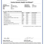 Odie 42064_96181_Canine_Genetic_Health_Certificate_12_07_2018