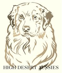 High Desert Aussies | Australian Shepherd Puppies Oregon