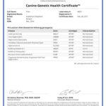 Prim 18792_44221_Canine_Genetic_Health_Certificate_25_02_2017